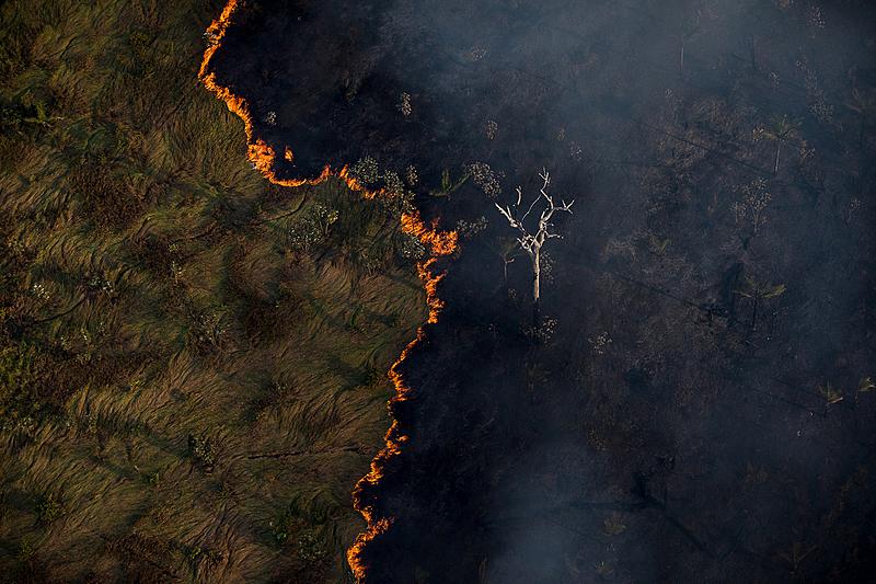 Los incendios este año representan un 12% más de lo registrado en el conjunto del año pasado
